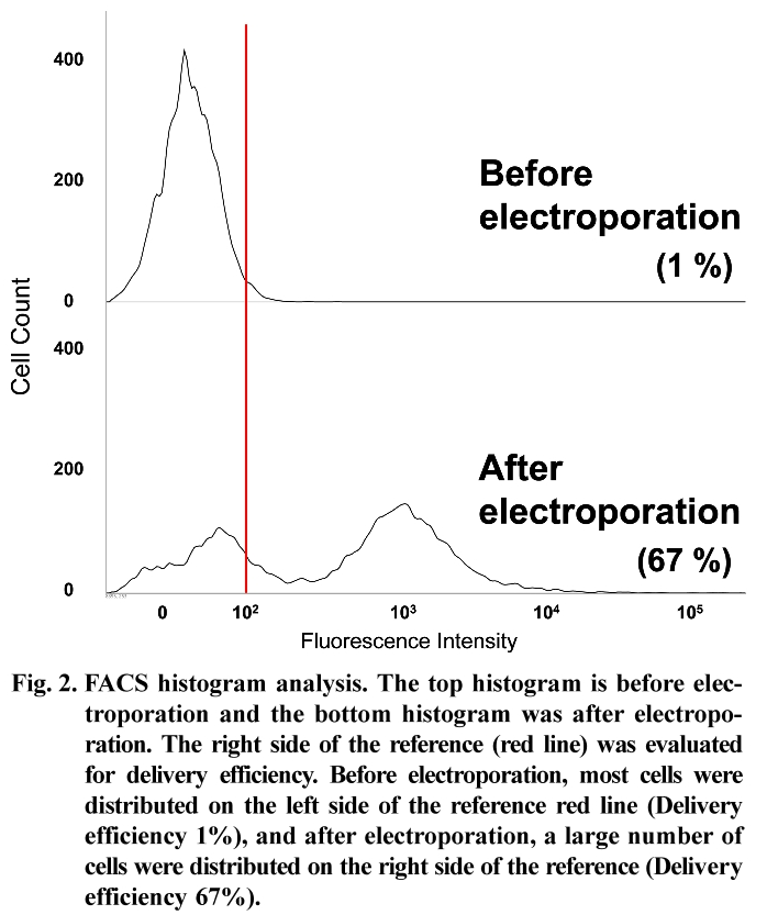 Fig. 2. FACS histogram analysis.