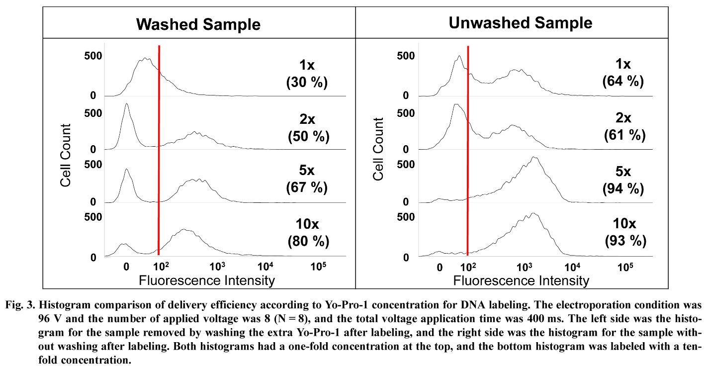 Fig. 3. Histogram comparison of delivery efficiency according to Yo-Pro-1 concentration for DNA labeling.