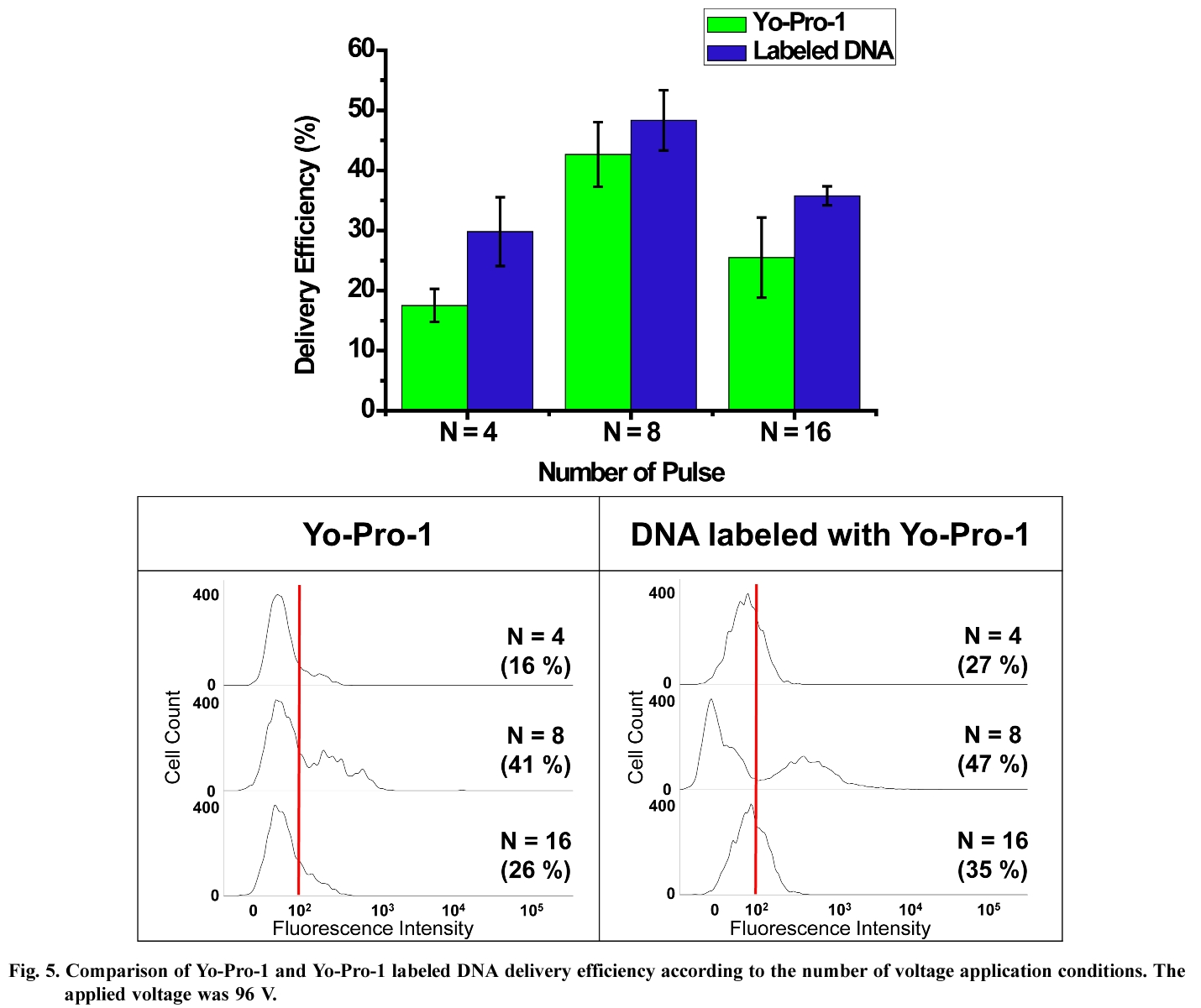 Fig. 5. Comparison of Yo-Pro-1 and Yo-Pro-1 labeled DNA delivery efficiency according to the number of voltage application conditions.