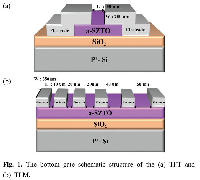 Fig. 1. The bottom gate schematic structure of the (a) TFT and (b) TLM.