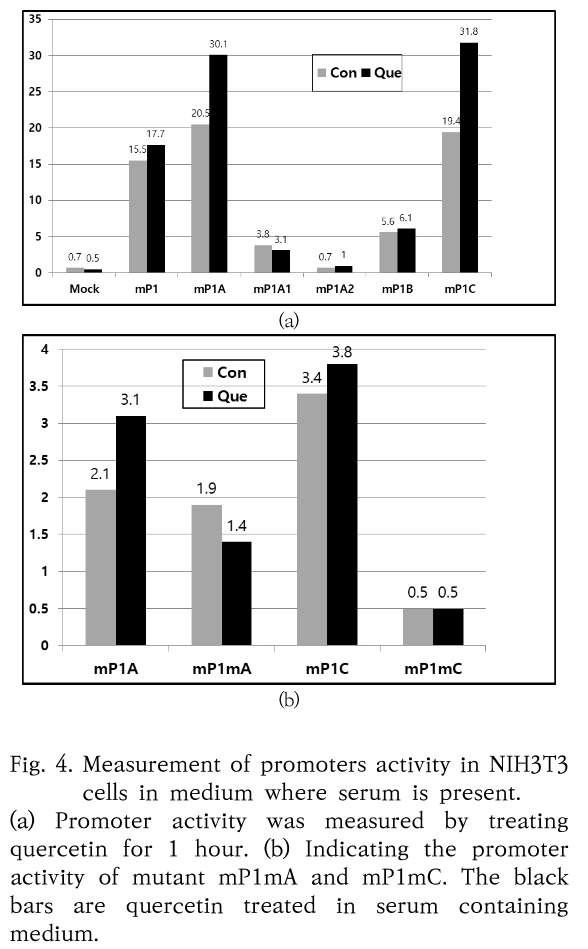 Fig. 4. Measurement of promoters activity in NIH3T3 cells in medium where serum is present.