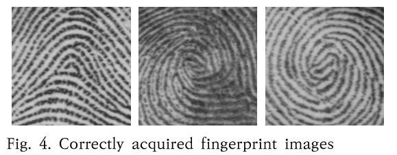 Fig. 4. Correctly acquired fingerprint images