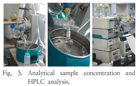 Fig. 5. Analytical sample concentration and HPLC analysis.