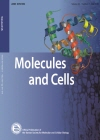 Molecules and cells